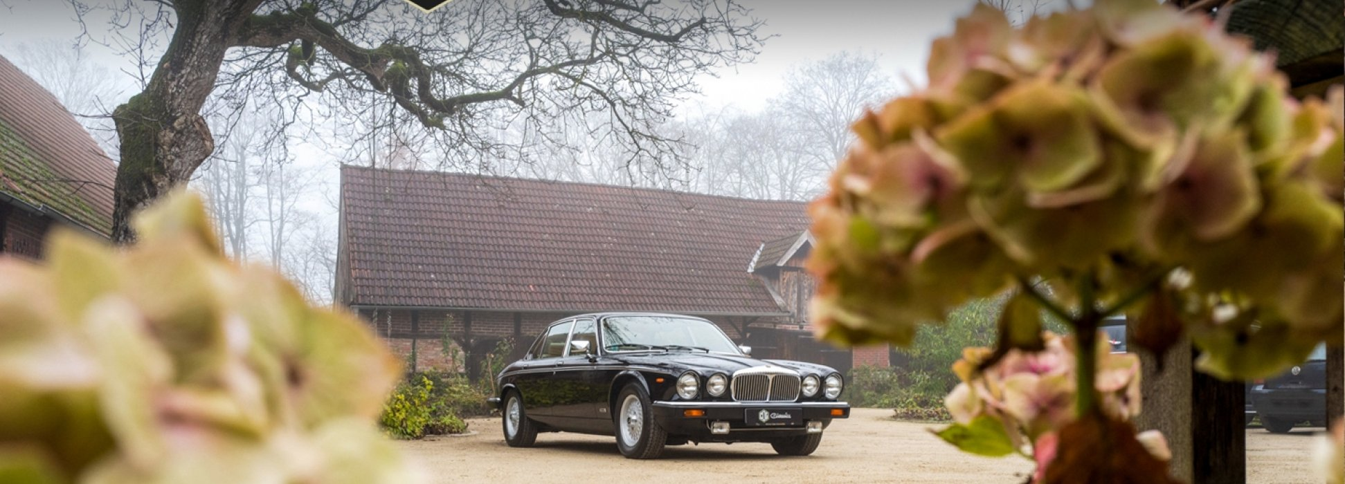 Jaguar Daimler Double Six 2
